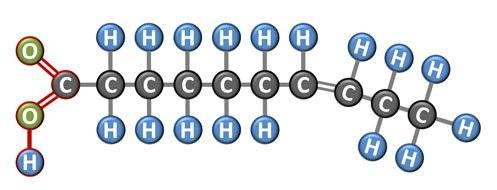 unsaturated fat molecule