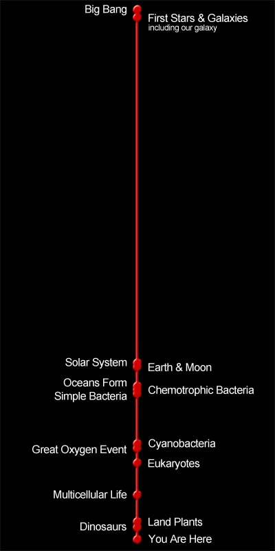 A timeline for the universe depicting notable features.