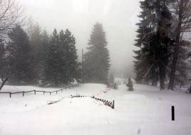 A view downhill from Les Pléiades during heavy snow fall.