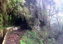 Madeira - Levada through tunnel
