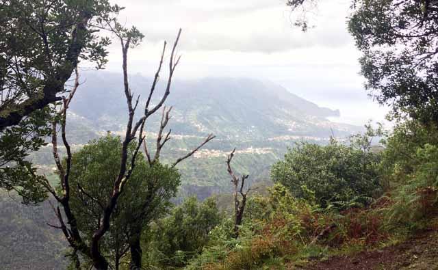Madeira - Return from Portela