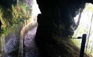 Levada Walking in Madeira